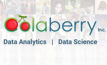 Colaberry Inc.